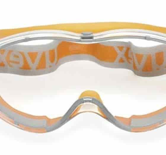 Safety Goggles for Winter Rose Pruning