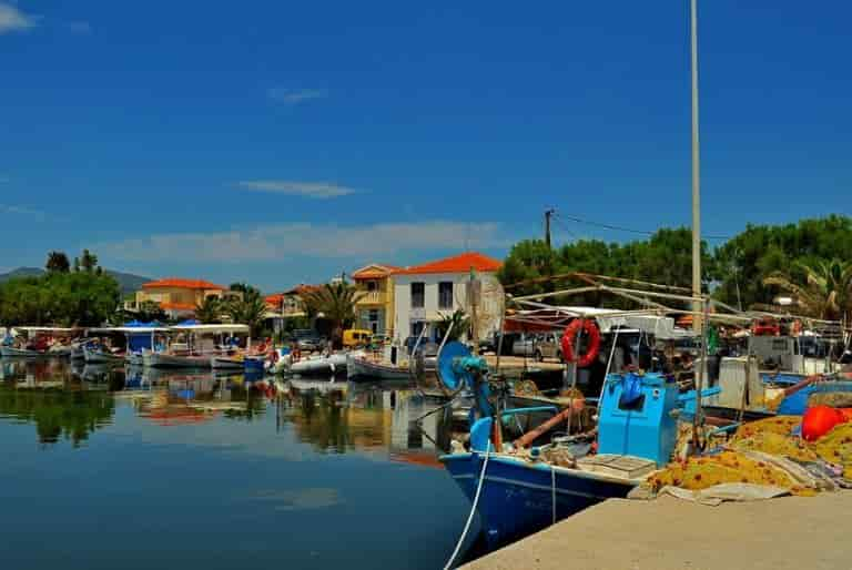 Special Education and Agricultural Training - The Fish Market of Kalloni in Mytilene
