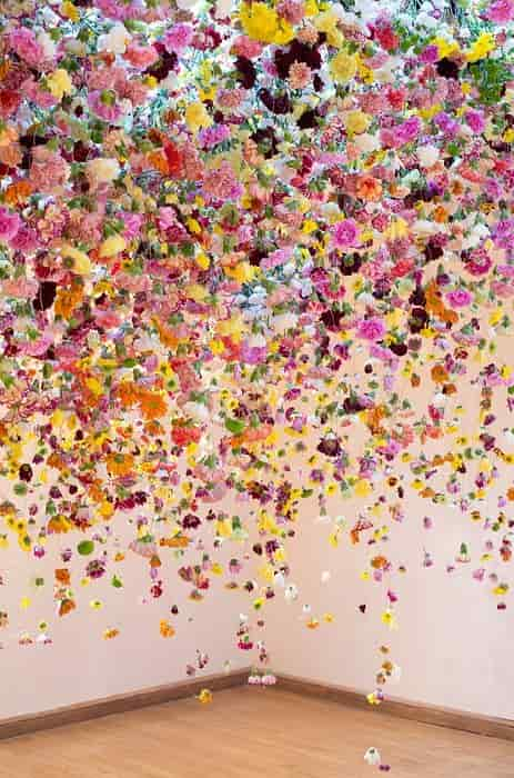 Rebecca Louise Law - The Hated Flower (2014)