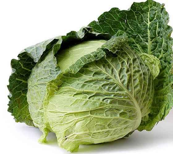 Headed Cabbage Climatic Requirements - Cut head with Leaves of Brassica oleracea var. capitata