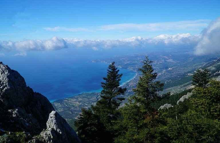 The Greek Fir Forest of Mount Ainos, Kefalonia and the Ionian Sea