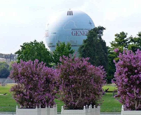 Flower pots with Crapemyrtles and the Balloon of Parc Andre Citroen Paris