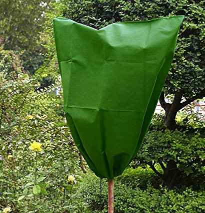 Ornamental Plants Frost Protection - Plant Protection with Canopy Cover by Bags from Breathable Fabric