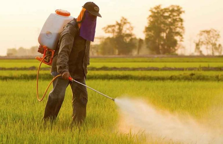 Farm Labor Spraying Organophosphate Pesticide